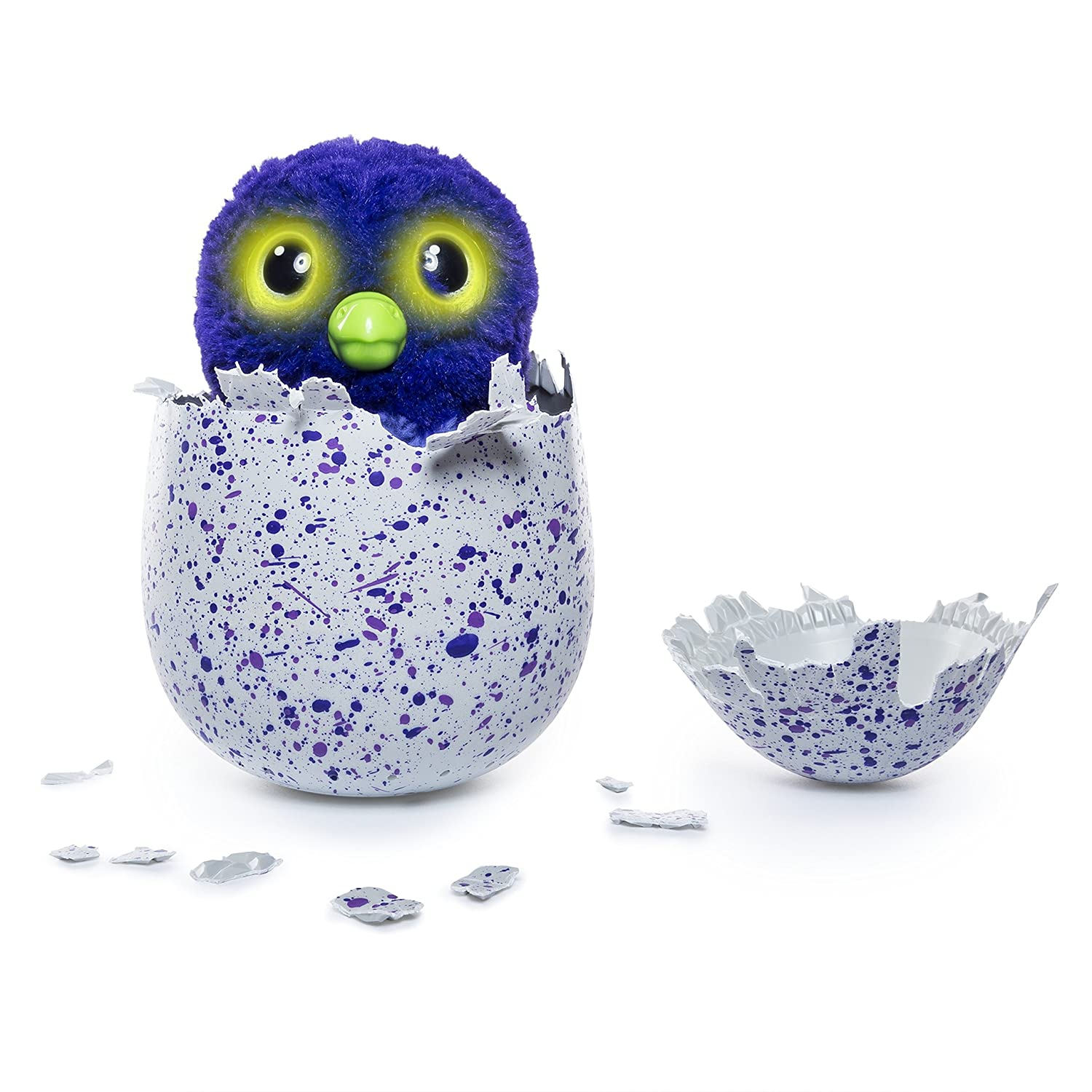 Amazon Hatchimals Draggle Blue Purple Egg Toys Games