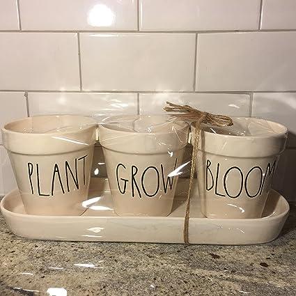Amazon Com Rae Dunn Pot Set Plant Grow Bloom By Magenta