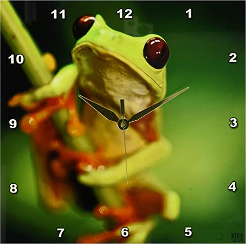 3dRose Green Tree Frog on a Twig Wall Clock, 10 by 10-Inch