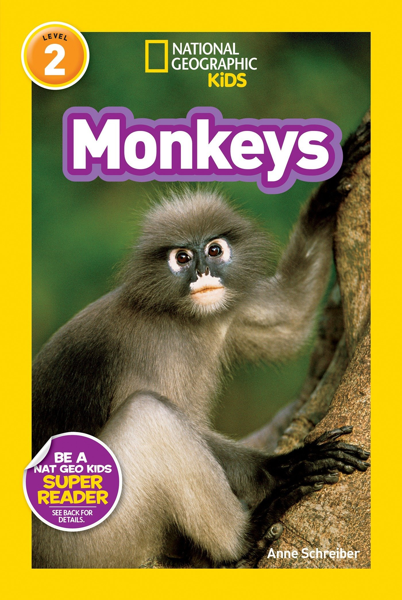 Download National Geographic Readers: Monkeys PDF