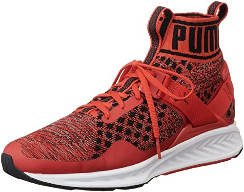 buy online 7c575 596e7 Puma Unisex's Ignite Evoknit High Risk Red, Quiet Shade and Black Running  Shoes-7.5 UK/India (41 EU) (18969702)