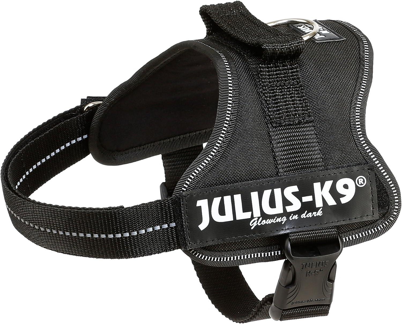 Julius-K9 Mini-Mini, 40-53 cm, Negro: Amazon.es: Productos para ...