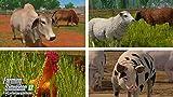 Farming Simulator 17 - Platinum Edition PC/MAC