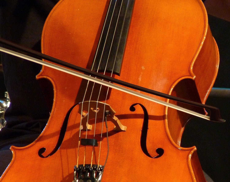 Eastman/® ECB-344 Arco de 4//4 Violonchelo en Carb/ón Chelo Cello