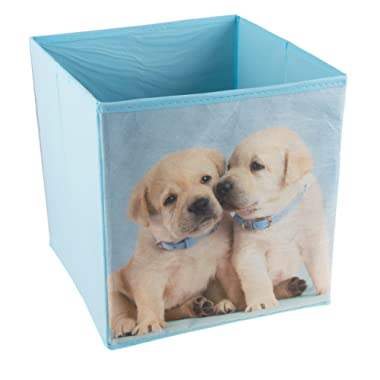 Cute Lab Puppies Collapsible Storage Organizer by Clever Creations   Cube Folding Storage Organizer for Animal Themed Rooms   Perfect Size Storage Cube for Books, Shoes, Games