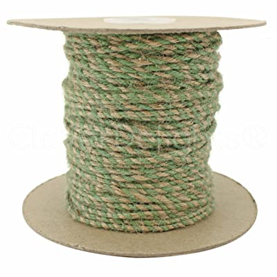 CleverDelights Jute Twisted Twine - 100 Yards - Natural and Mint Color - 3mm Diameter - Eco-Friendly Natural Jute String Rope: Health & Personal Care
