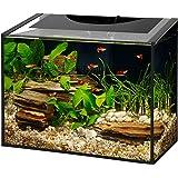 Aqueon Ascent LED Frameless Aquarium Kit