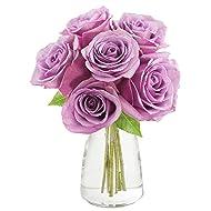 KaBloom Bouquet of 6 Fresh Cut Purple Roses (Farm-Fresh, Long-Stem) with Vase