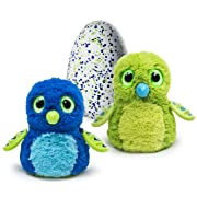 Hatchimals - Hatching Egg - Interactive Creature - Draggle - Blue/Green Egg by Spin Master: Amazon.ca: Toys & Games