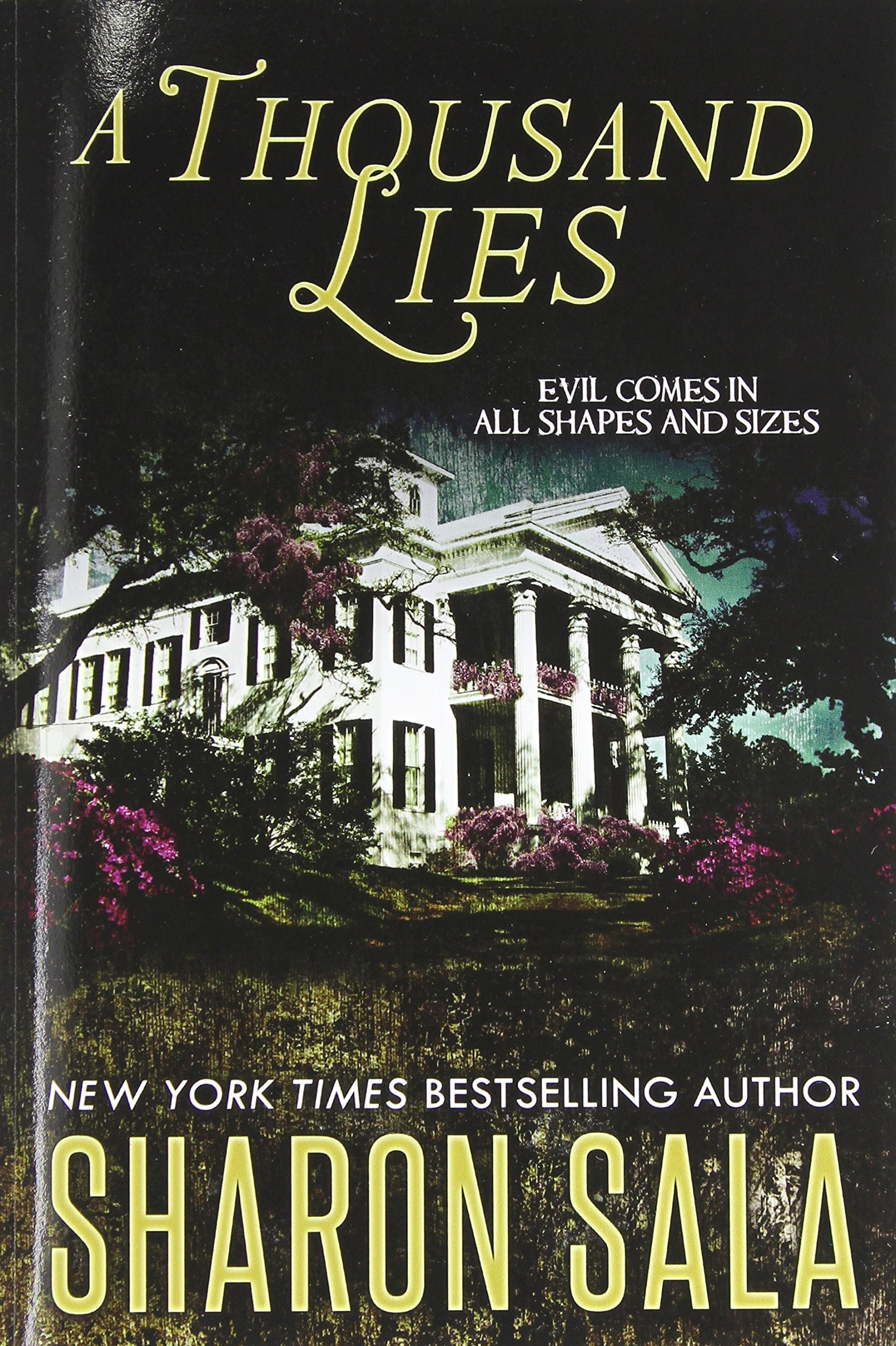 A Thousand Lies ebook