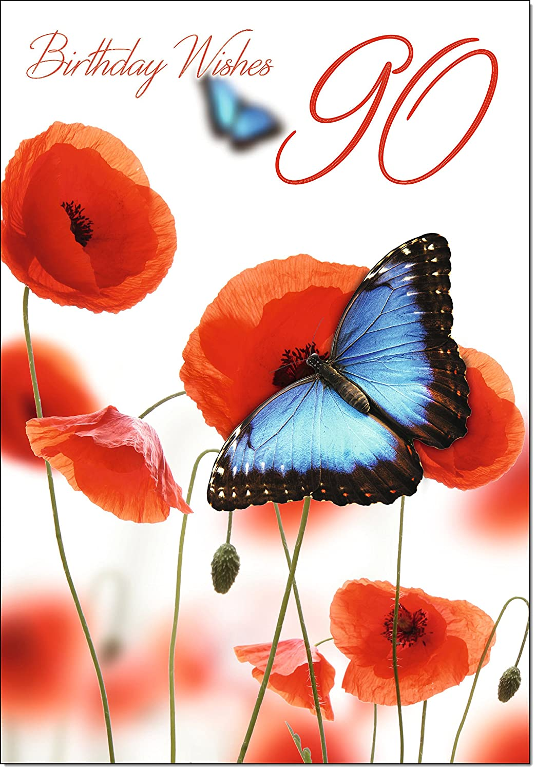 Doodlecards 90th Birthday Card Age 90 Butterfly And Poppies