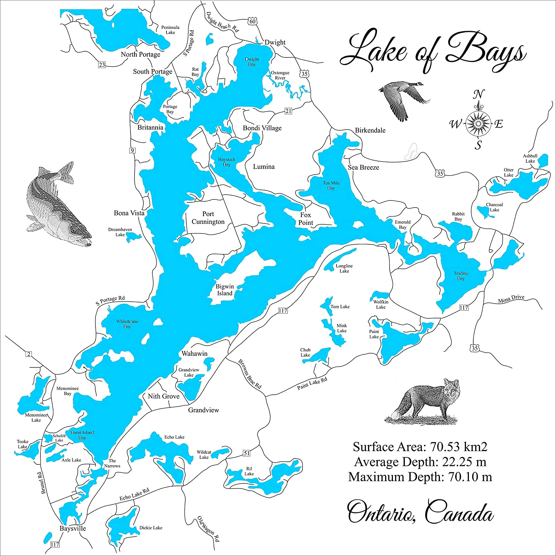 Amazon.com: Lake of Bays, Ontario: Framed Wood Map Wall ...
