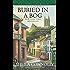 Buried In a Bog (County Cork series Book 1)