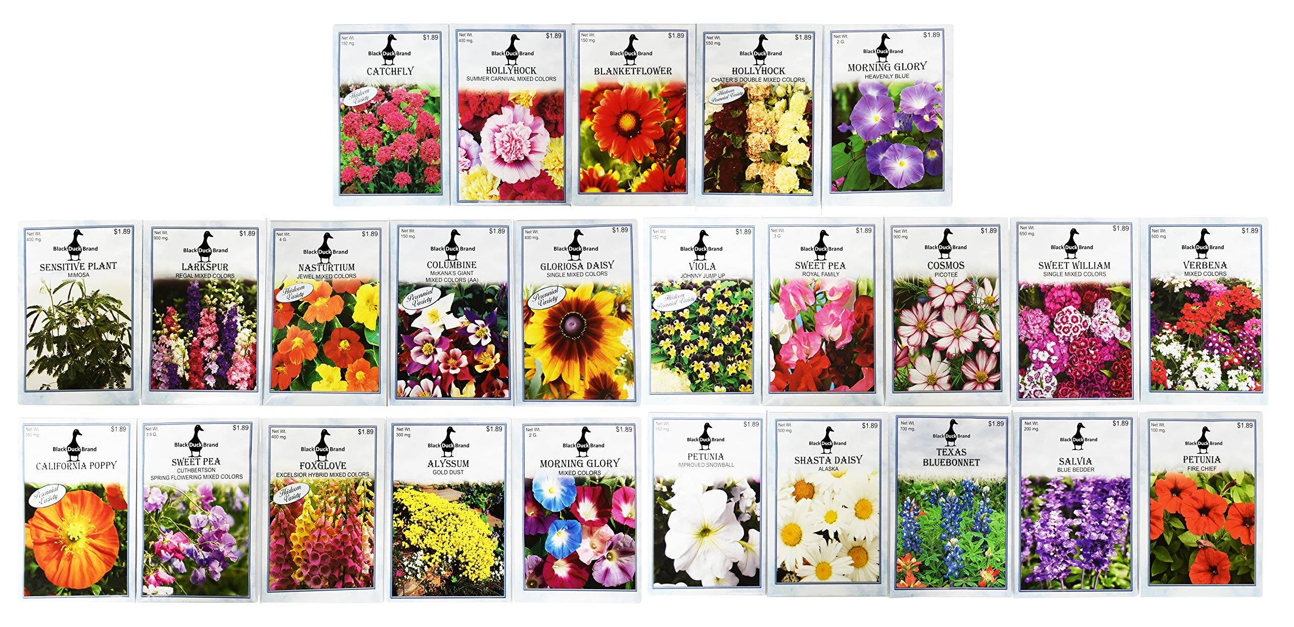 Set of 25 Premium Selection Flower Seed Packets! Flower Seeds in Bulk - 25 Deluxe Varieties! by Black Duck Brand