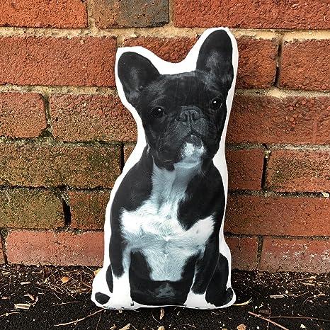 Amazon.com: Cojín Co – Bulldog francés blanco y negro con ...