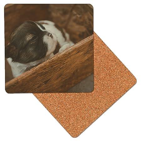 Linda del perrito en una caja Posavasos de madera de primera ...