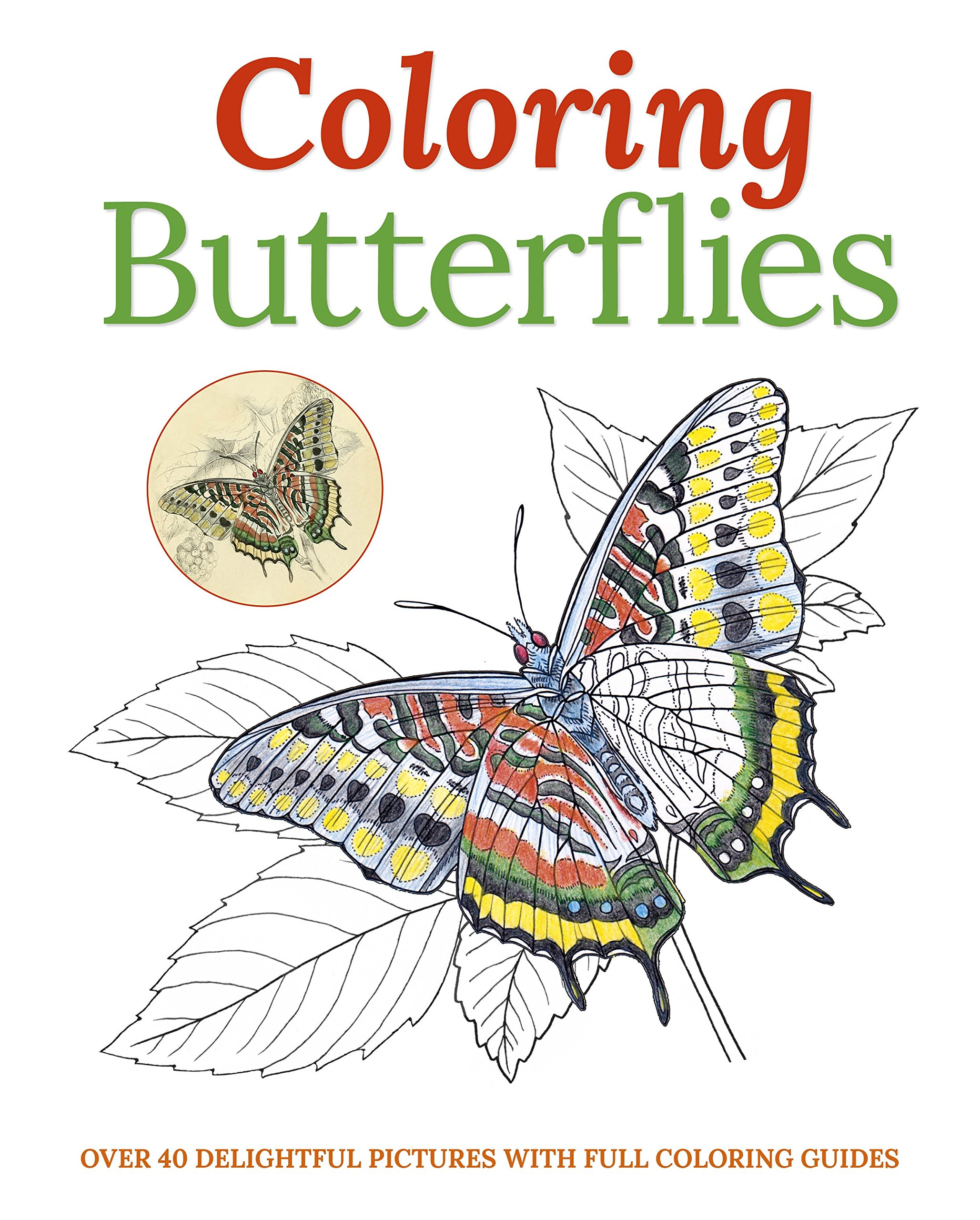 amazon com coloring butterflies 9781785990403 sir william