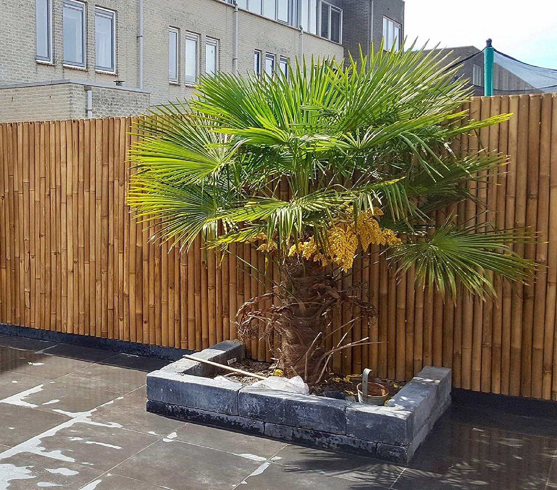 Amazon De De Commerce Extrem Stabiler Bambus Holz Sichtschutz