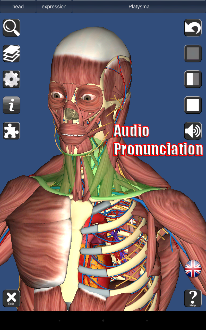 Amazon 3d Anatomy Appstore For Android