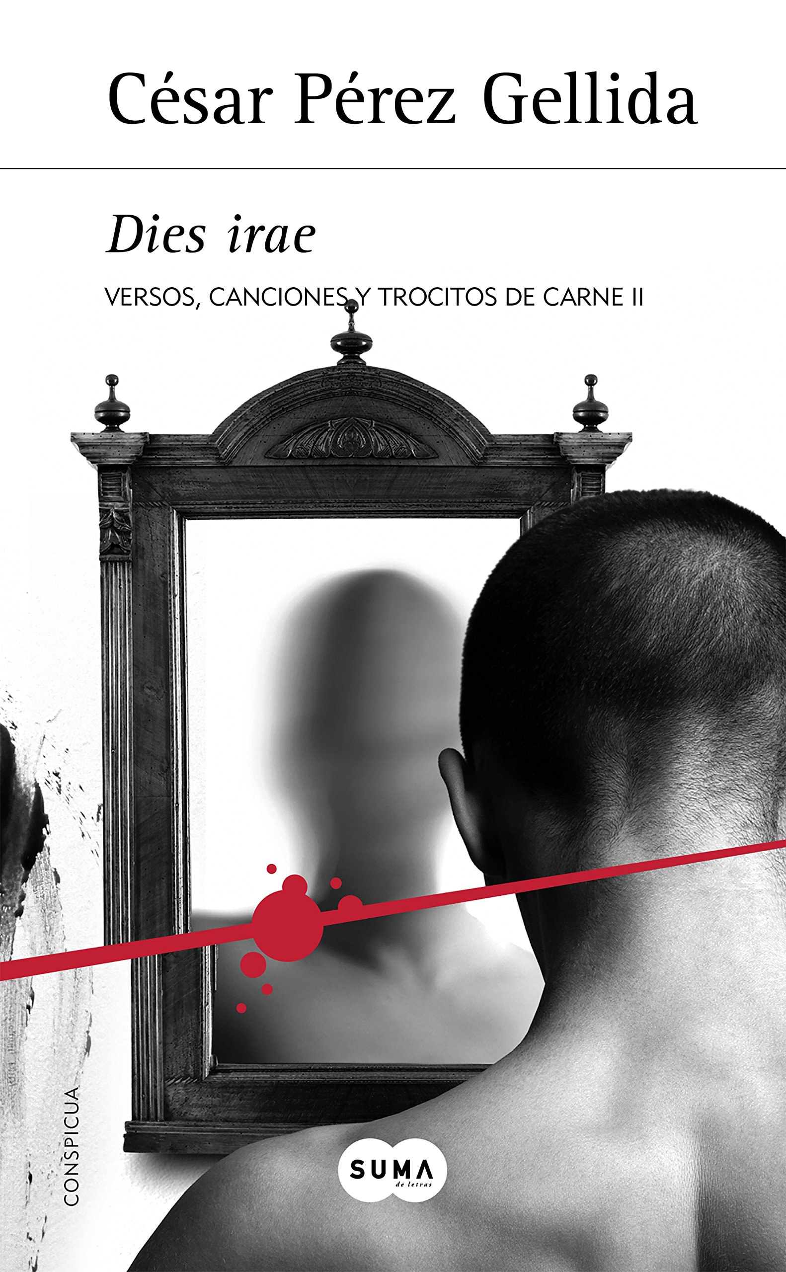 Dies irae (Versos, canciones y trocitos de carne 2): Amazon ...