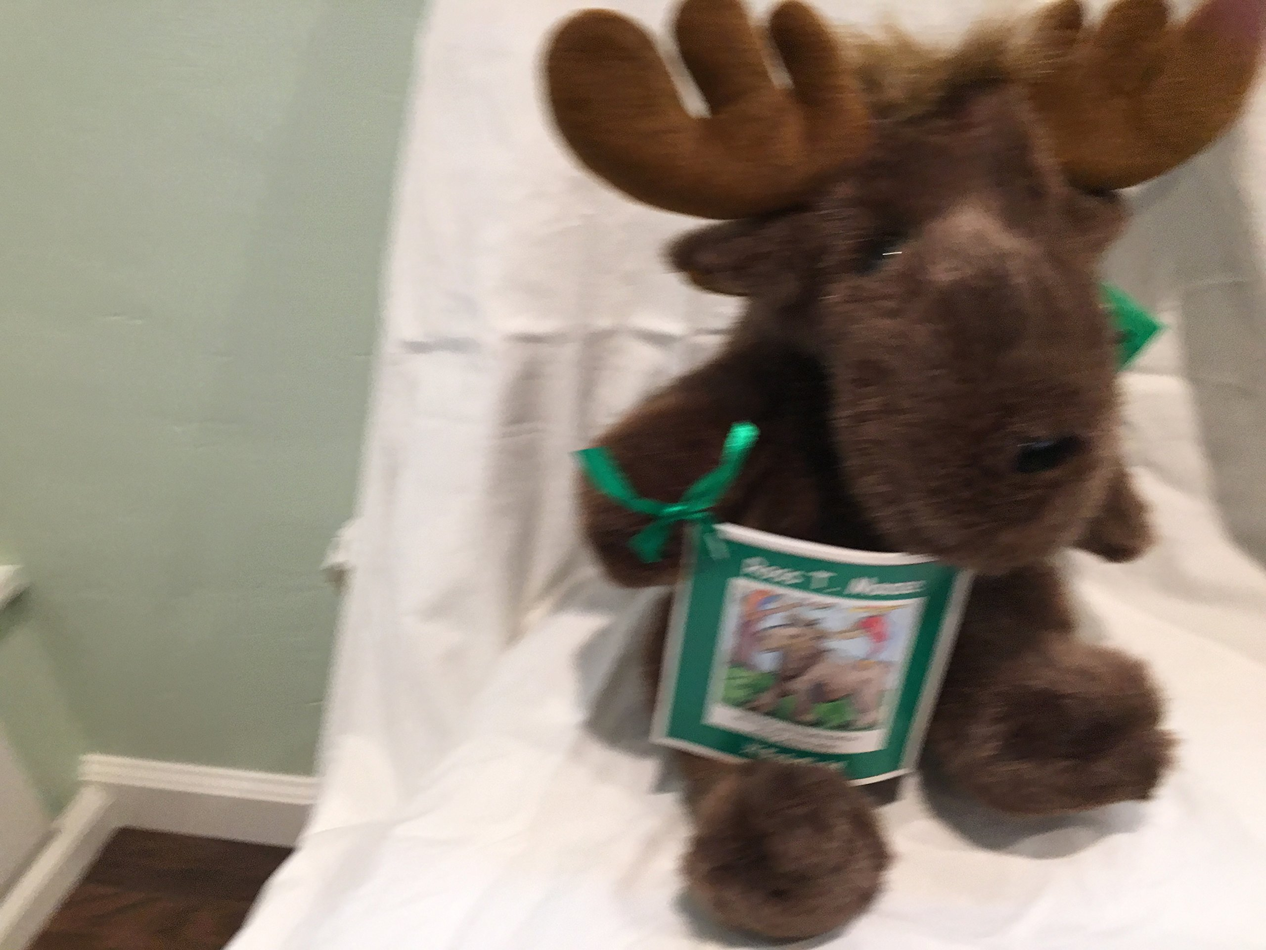 CRITTER CRAFTS '' ROSS T. MOOSE'' 12'' PLUSH by CRITTER CRAFTS