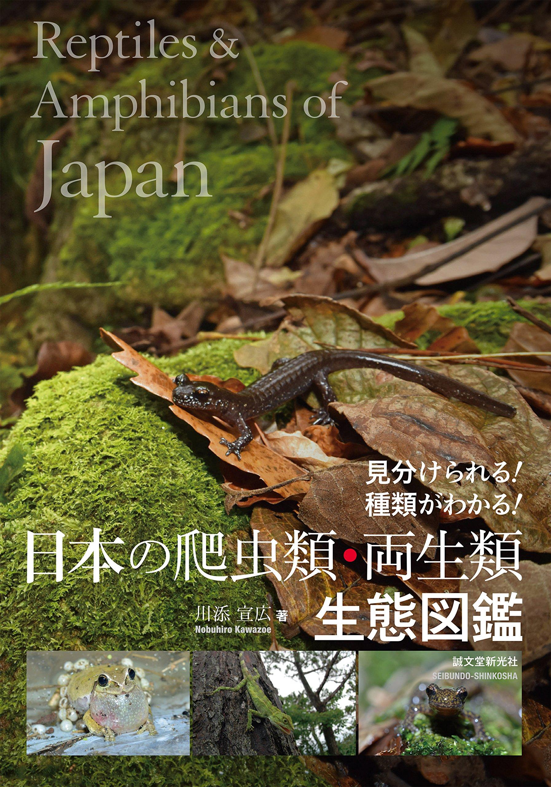 日本の爬虫類・両生類 生態図鑑:...