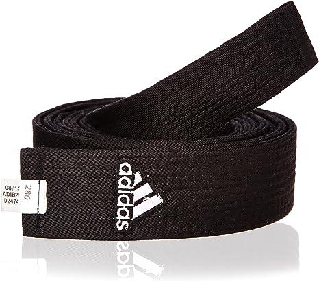 cazar Acelerar seguramente  adidas Champion - Emblema para cinturón de Artes Marciales, Color Negro,  Talla 280 cm: Amazon.es: Deportes y aire libre
