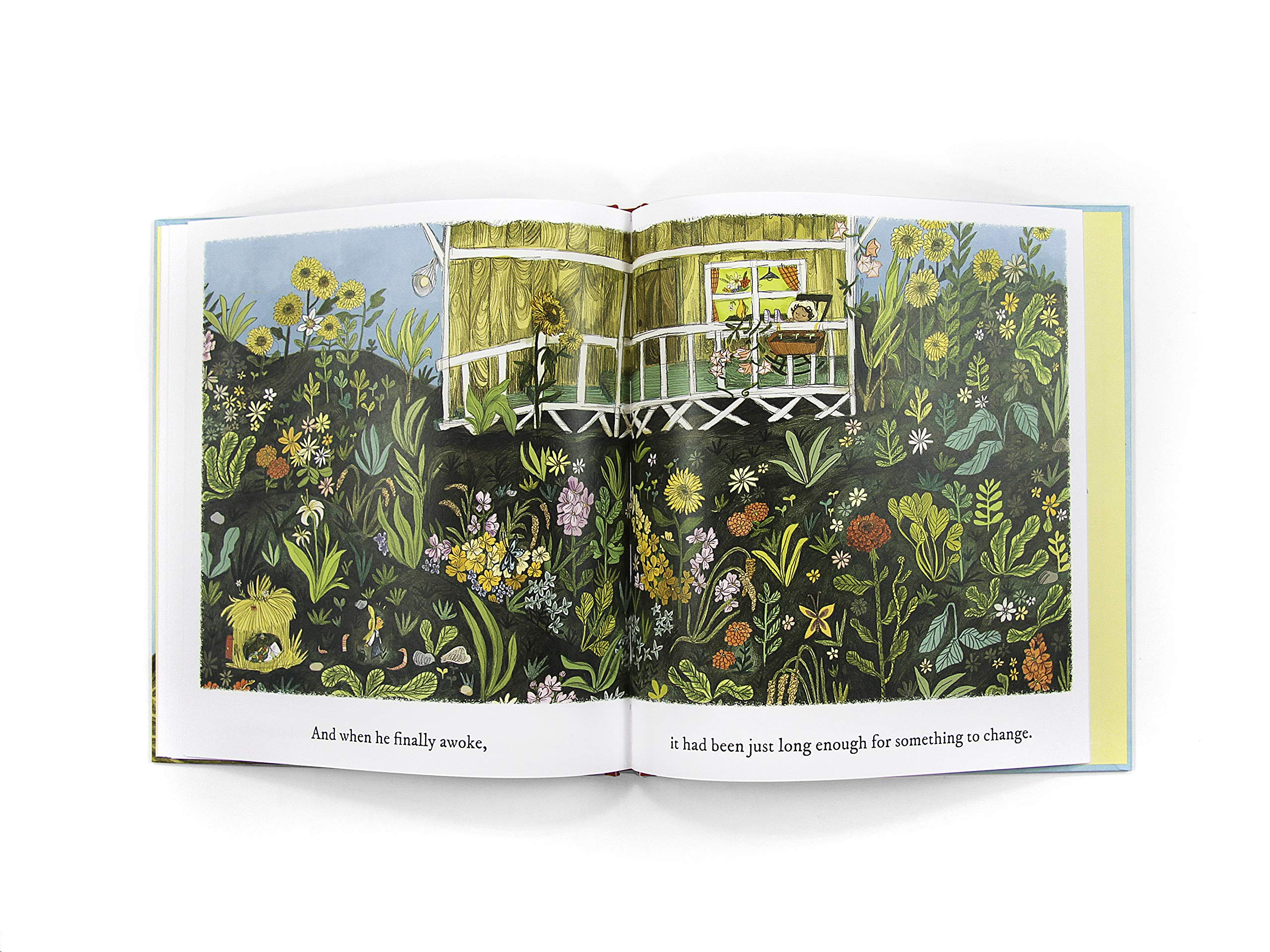 The Little Gardener by Hachette Book Group (Image #7)
