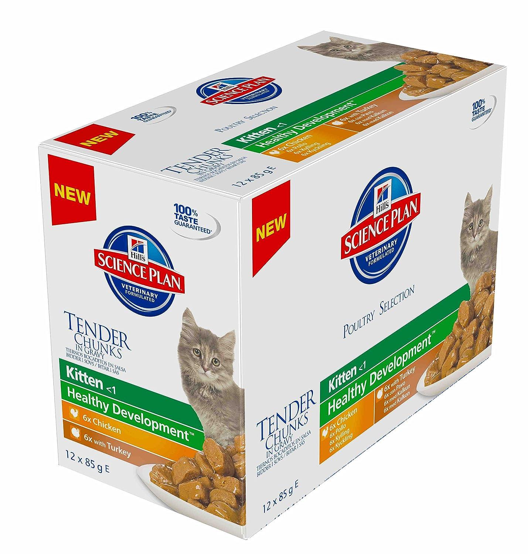 Hills Science Plan C-54100 Perfect Weight - Comida para gatos 1+, 24 x 85 gr: Amazon.es: Productos para mascotas