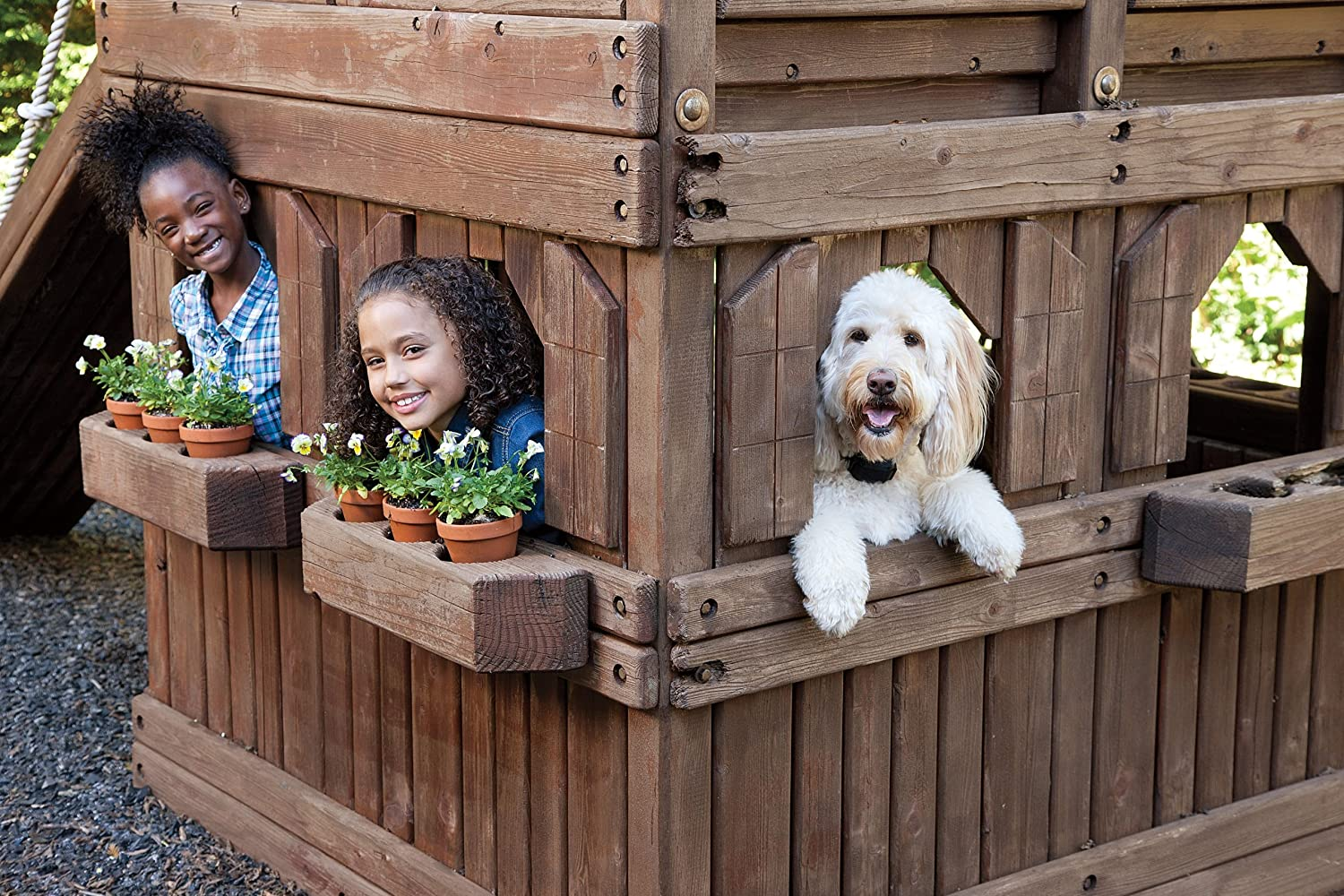 amazon com petsafe yardmax rechargeable in ground fence for dogs