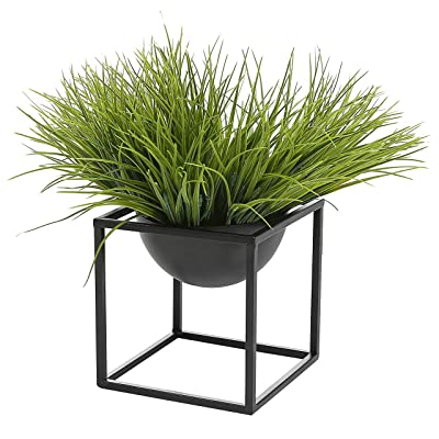 Modern Metal Cube Frame Planter Bowl, Decorative Accent Vase with Attached Framework Stand, Black : Garden & Outdoor