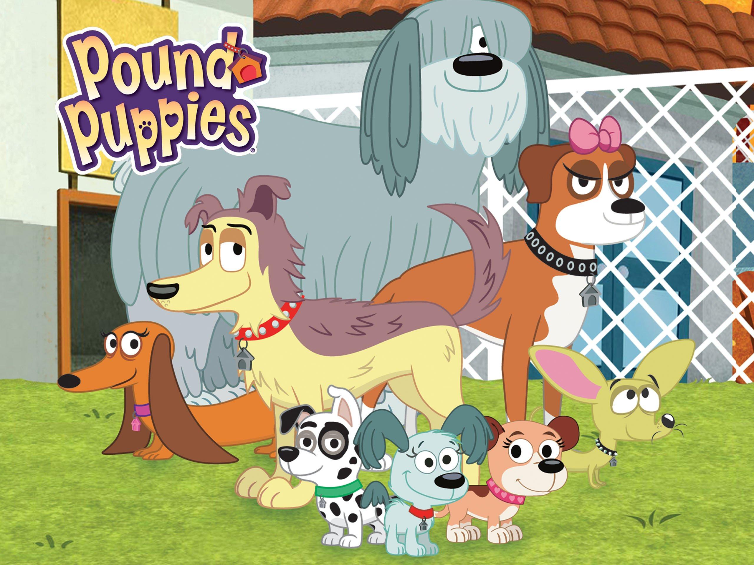 Amazon Pound Puppies Season 1 Eric McCormack Michael