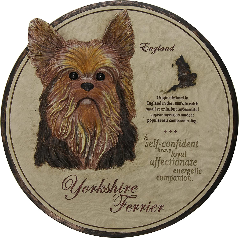 Amazon.com: Evergreen Enterprises Yorkshire Terrier Garden Stone