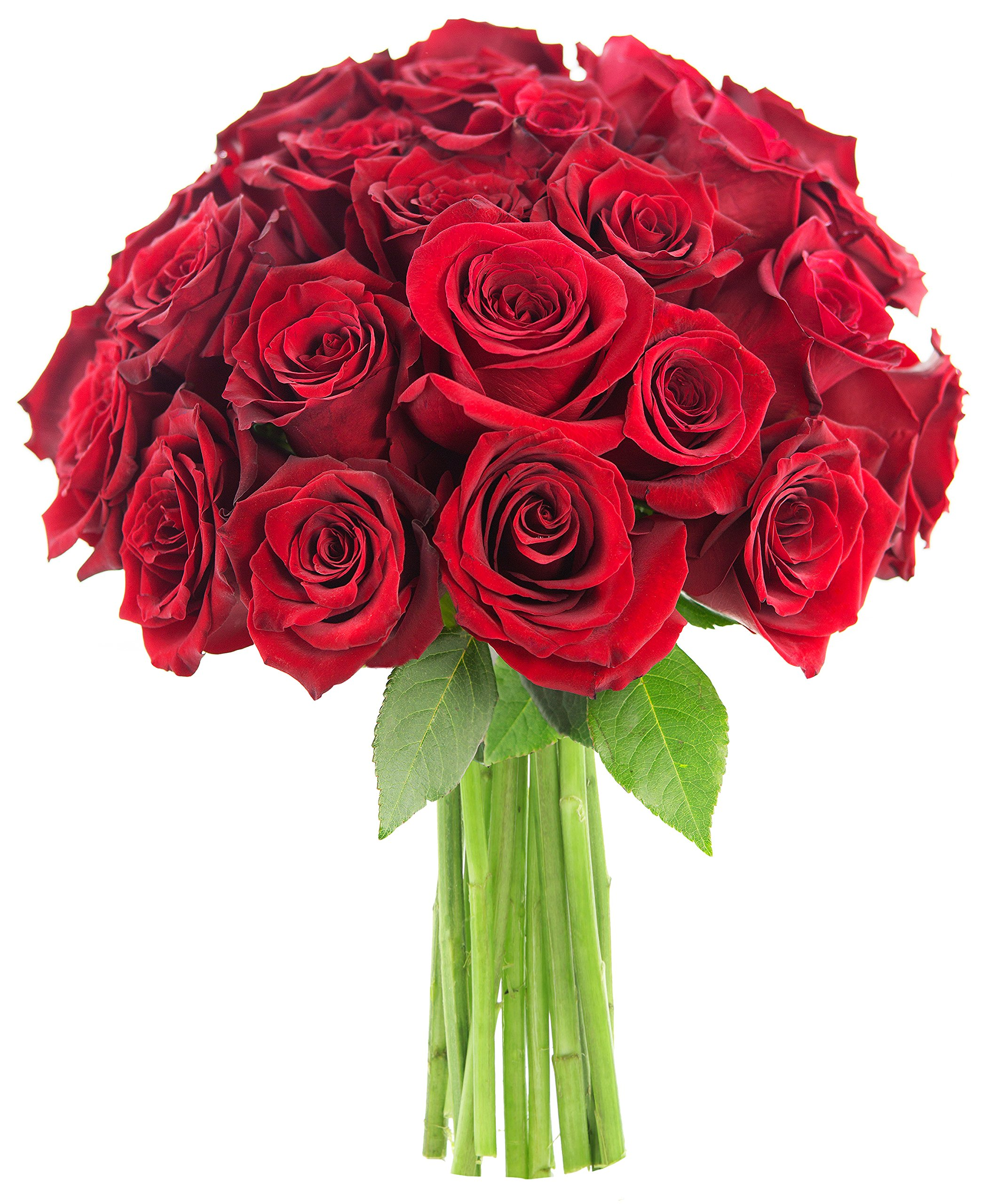 Valentine's Farm Fresh Bouquet of 25 Romantic Red Roses - KaBloom's Natural-State Collection