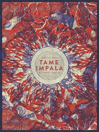 Tame Impala Wall Poster Print Decor Gift