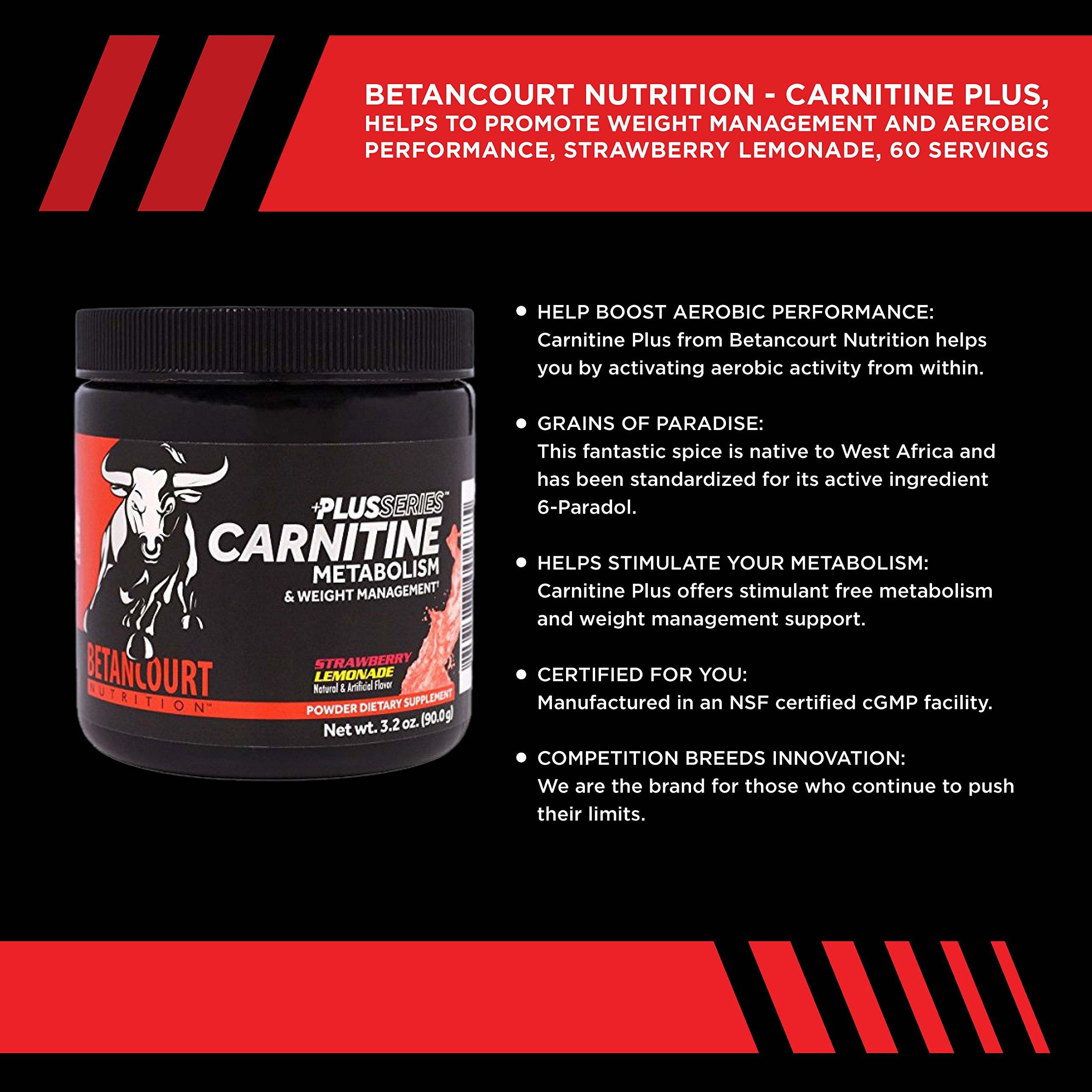 Betancourt Nutrition Plus Series Carnitine, Strawberry Lemonade, 60 Servings by Betancourt Nutrition
