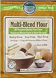 Authentic Foods Multi Blend Flour, 3lbs