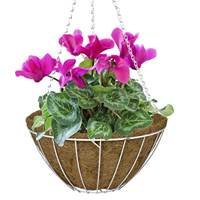 CobraCo White 14-Inch Growers Style Hanging Basket HGB14-W: Garden & Outdoor
