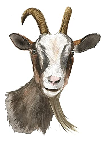 Enjoyable Goat Art A027 Goat Print 8X10 Goat Baby Art Goat Painting Goat Artwork Goat Picture Nursery Decor Baby Room Wall Art Farm Animals Goat Watercolor Home Interior And Landscaping Spoatsignezvosmurscom