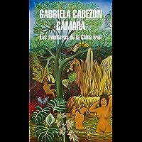 Las aventuras de la China Iron (Spanish Edition) book cover