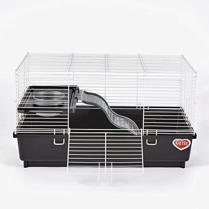 The Best Rat Cage Home