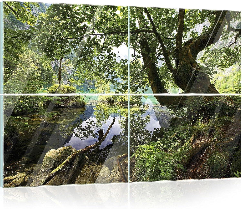 FORWALL de Cristal Cristal fotográfico EchtGlas – Cuadro de Bosque Real Glass Print Juego Picture amf10222 _ gts10 Natural Árbol Bosque Agua Verde, Vidrio, Grün,Braun, GS10 (120cm. x 80 (4x60x40)): Amazon.es: Juguetes