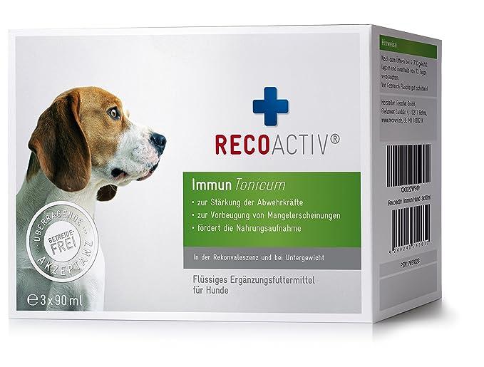 RECOACTIV Immun Tonicum für Hunde - Kurpackung 3x90 ml