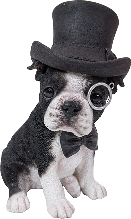 061bfcda4ee Amazon.com  Boston Terrier with Top Hat - Spectacle and Bow Tie  Garden    Outdoor