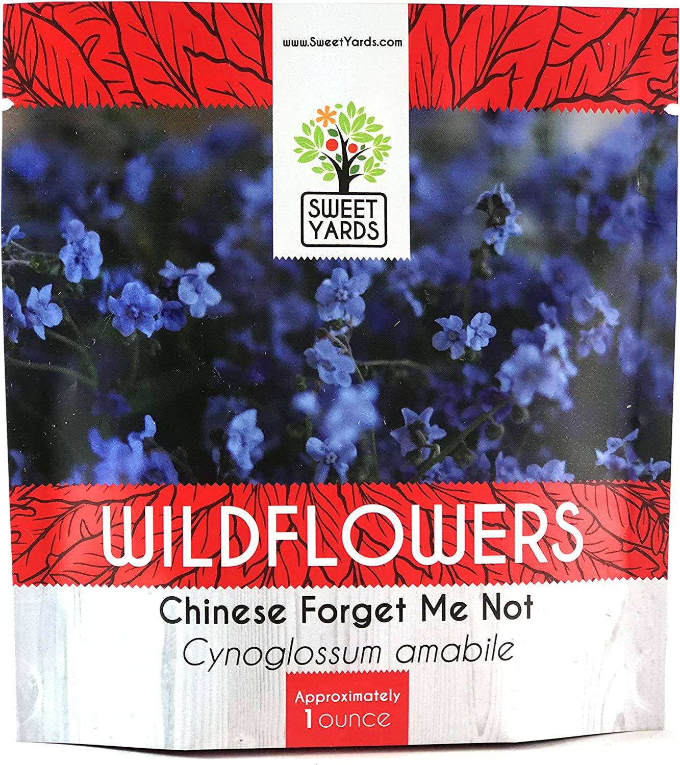 500  Seeds Chinese Blue Forget Me Nots