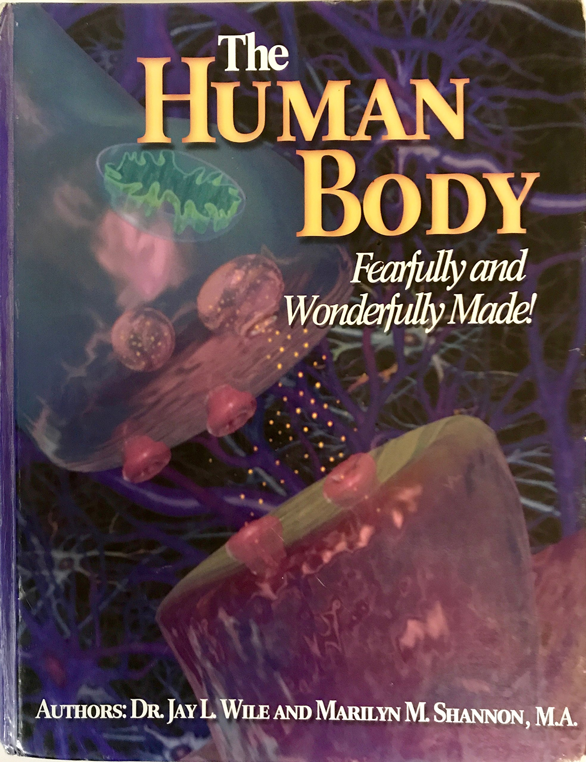 The Human Body: Fearfully And Wonderfully Made: Jay L. Wile, Marilyn ...