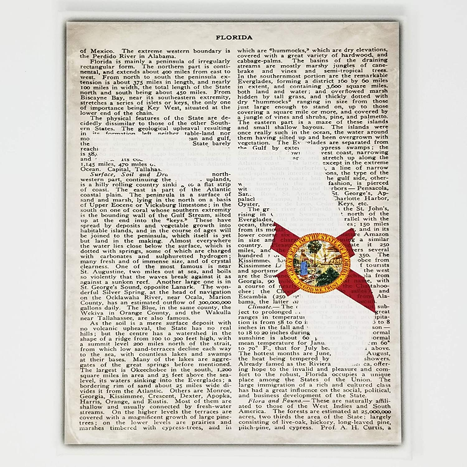 Florida Flag Canvas Wall Decor - 8x10 Decorative FL State Map Silhouette Encyclopedia Art Print - Ready To Hang - Home State Love Handmade Gifts - FLA Decorations