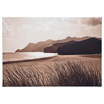 Amazon new ikea premiar sea grass canvas print with frame 55 x new ikea premiar sea grass canvas print with frame 55 x 78 inches gumiabroncs Images
