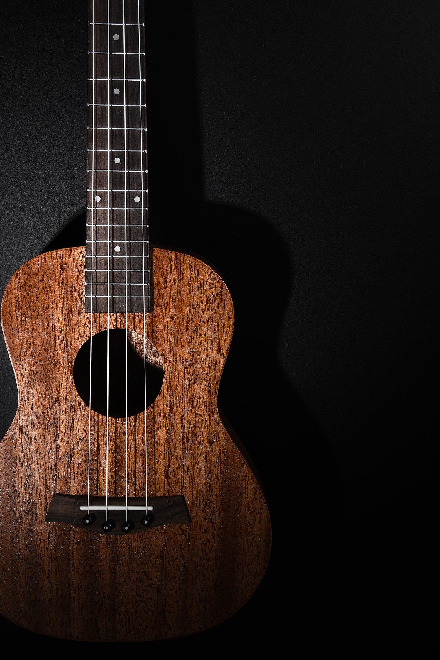 Ortega Guitars RU5CE-BA Baritone Ukulele with Spruce Top and Pickup Sapele Body