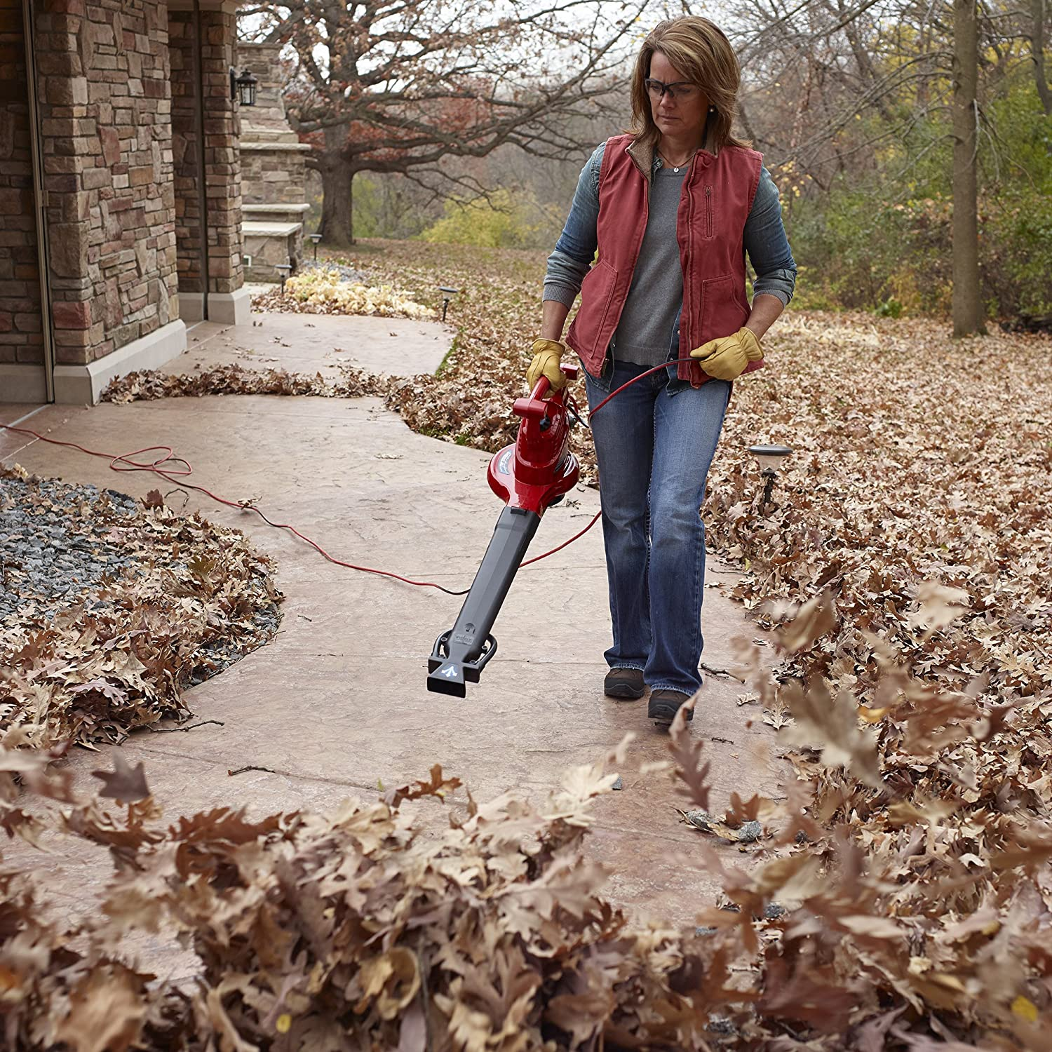 best leaf blower consumer reports